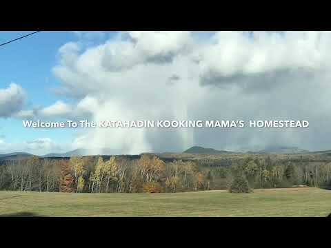 Homesteading In Maine Free Things To Support Your Homestead Youtube