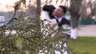 Санал и Кема Свадьба в Городовиковске, Республика Калмыкия