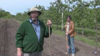 2010 NC-140 Apple Rootstock Planting