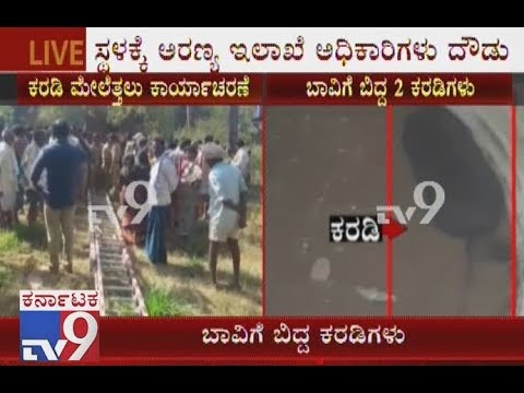 2 Bears Who had Come In Search Of Food Fell In An Empty Well In Ramanagara
