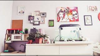 vlog как ВПУТЫВАТЬ детей, метаморфозы детской, РОЗЫГРЫШ кота - Senya Miro