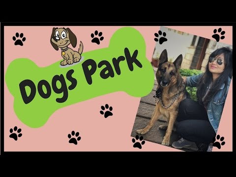 Dogs park in Bangalore? | pet friendly places in Bengaluru | bangalore youtuber | indian youtuber