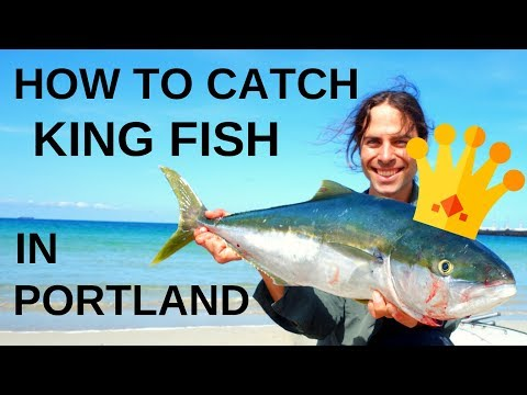 How To Catch King Fish At Portland