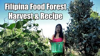Filipina Food Forest Harvest And Off Grid Pinoy Cooking Recipe (Ginisang Upo)
