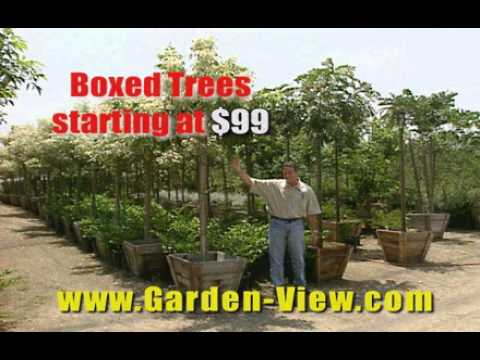 Garden View Nursery Tv Spot
