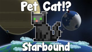 Pets!? GLORIOUS CATS! - Starbound Nightly Build
