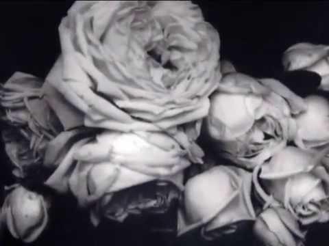 ArsLife - Edward Steichen. High Fashion & Lives