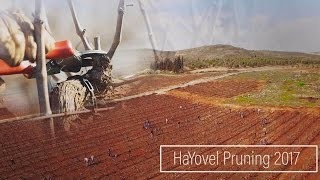 """More Than I Bargained For..."" 
