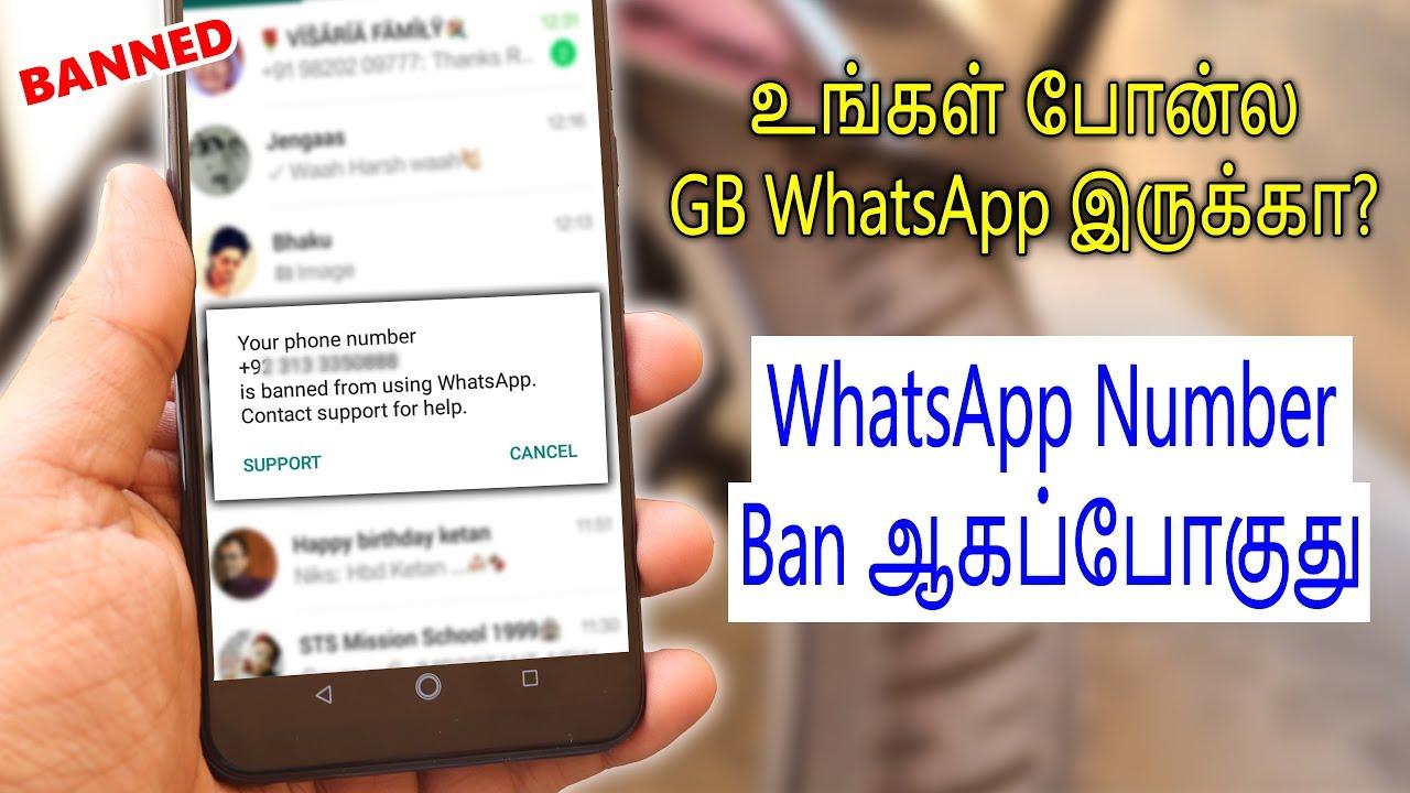 Whatsapp ப த ய அத ரட Gb Whatsapp Users Account
