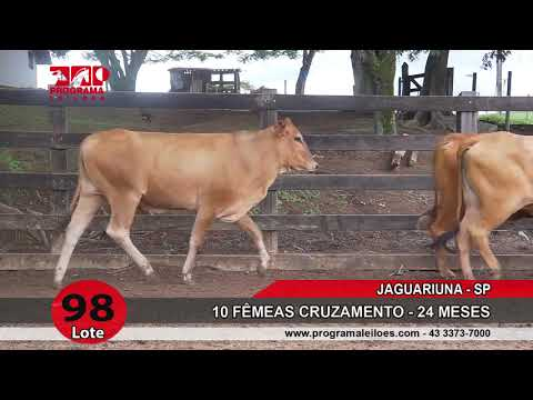 LOTE 098