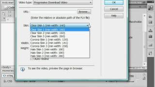 Добавление видео в формате flv в Adobe Dreamweaver CS4 (38/51)