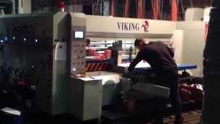 VIKING 1300x2400 в