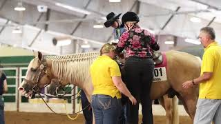 Reliving the Memories  2018 NSBA World Show