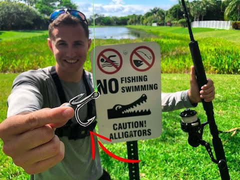 World's STRONGEST FISHING HOOK! *Nuisance Alligator Removal*
