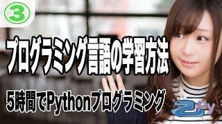 5時間で学ぶプログラミング基礎(python編) 3.プログラミング言語の学習方法