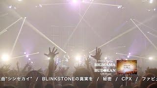 「BIGMAMA in BUDOKAN」DVD&Blu-ray ティーザー映像