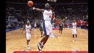 Darius Miles - The Punisher