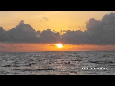 Blink 182 - Miss You(DJ Penedo Remix)