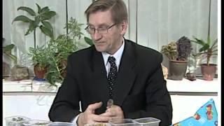 видео Травы от бессонницы