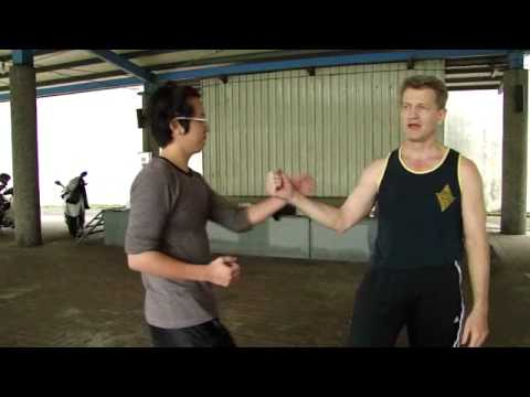 Wing Chun Double Palm Attack (Po Pai)