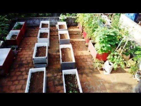 உங்க வீட்ல மாடித்தோட்டம் போடனுமா இதை பாருங்க !,  easy way to make a terrace garden.