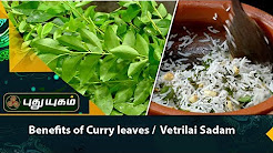 Health Benefits of Curry leaves / Betel Leaves Rice ( Vetrilai Sadam ) | 11/01/2018 | Arivom Arogyam