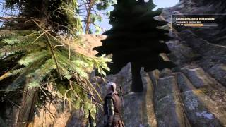 Dragon Age™: Inquisition -Beautiful Environment and that one bad tree...