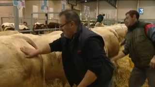 Les éleveurs bovins réunis aux conviviales de Bressuire (79)
