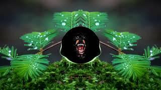 "Lil Pump- ""What You Gotta Say"" ft. Smokepurpp"