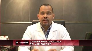 En testiculos varicocele