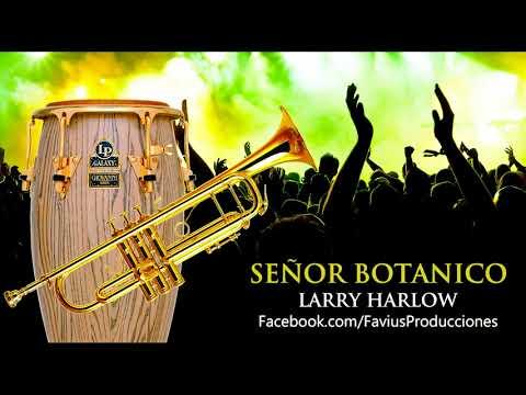 Pista Karaoke Demo: Señor Botanico (Larry Harlow - Ismael Miranda) - Favius Producciones