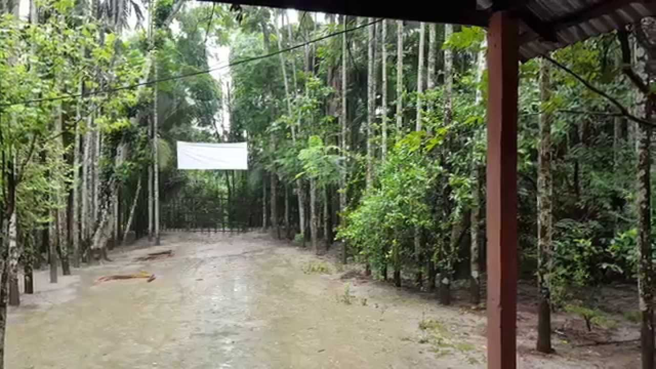 beauty of nature rainy season youtube