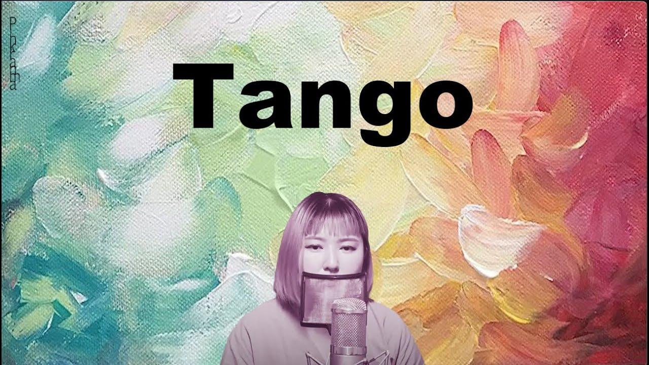 Abir - Tango cover pinkranma