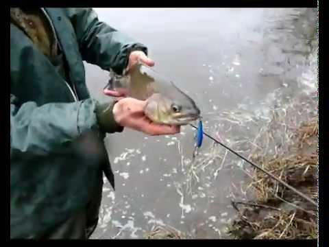 рыбалка в хабаровске в апреле