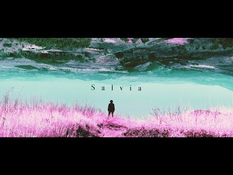 PORFIDIO - Salvia | Official Music Video