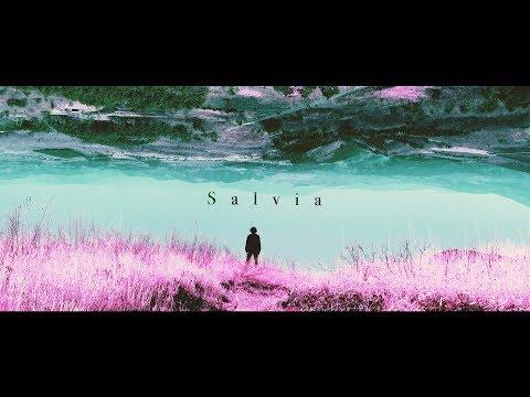 PORFIDIO - Salvia | Official Music Video