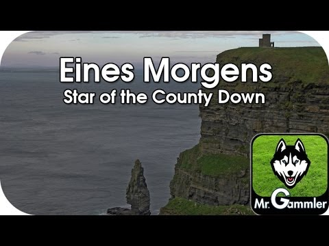 Eines Morgens / Star of the County Down (Instrumental)