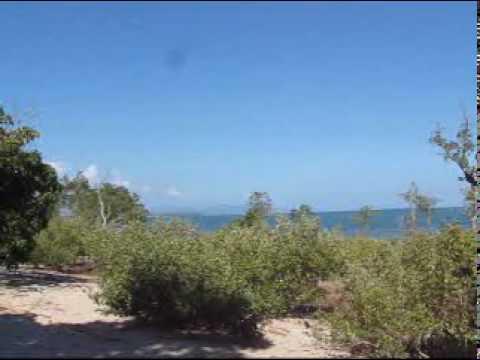 Roxas, Palawan - A residential beach 4 SALE - www.palawanproperty.com