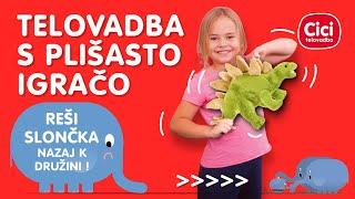 Reševanje slončka - vadba za otroke - cicitelovadba