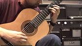 Акустическая гитара HOHNER HW220 - YouTube