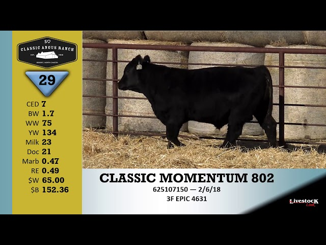 Classic Angus Ranch Lot 29