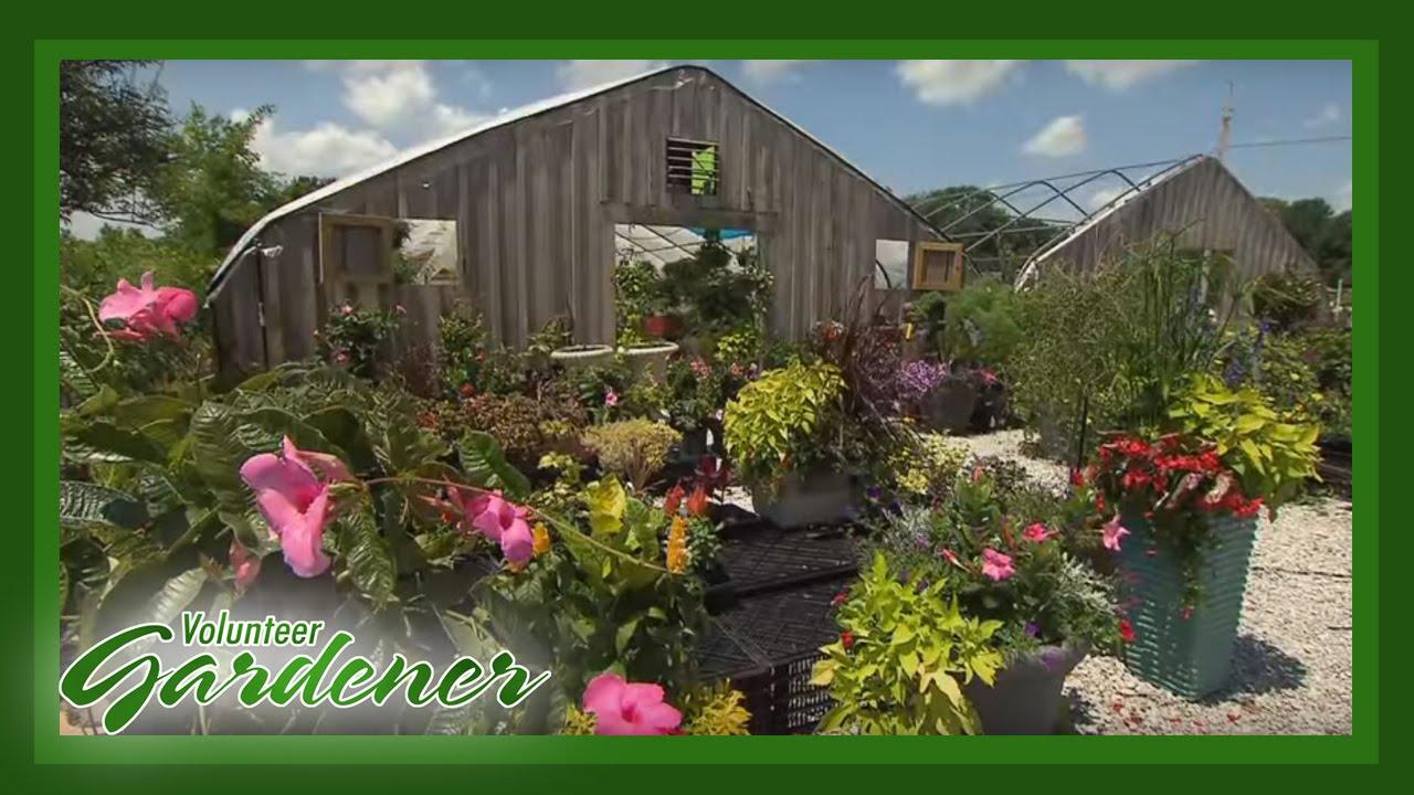 Rita\'s Rare Plants | Volunteer Gardener - YouTube
