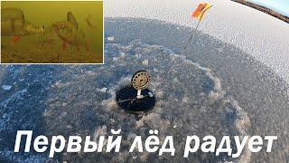 ПЕРВЫЙ ЛЁД РАДУЕТ КЛЁВОМ THE FIRST ICE PLEASES COOL