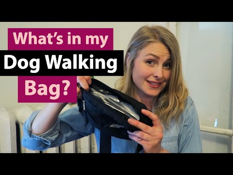 What's In My DOG WALKING Bag?