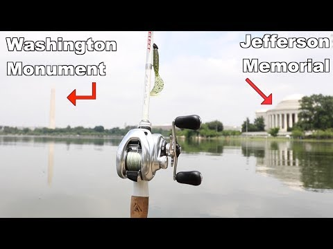 You Won't Believe What I Caught in Washington D.C. (Urban Bank Fishing)