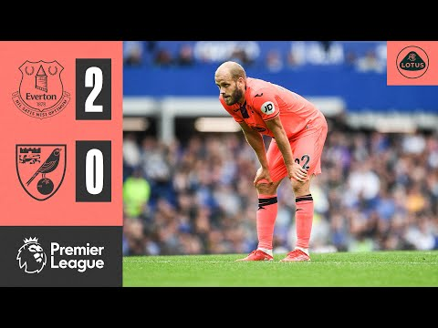 Everton Norwich Goals And Highlights