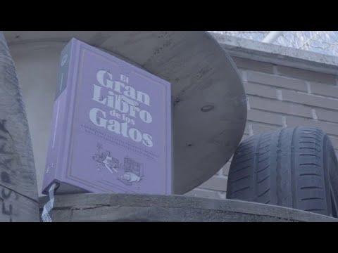 'el-gran-libro-de-los-gatos'-repasa-la-literatura-felina-universal-|-ahora-qué-leo