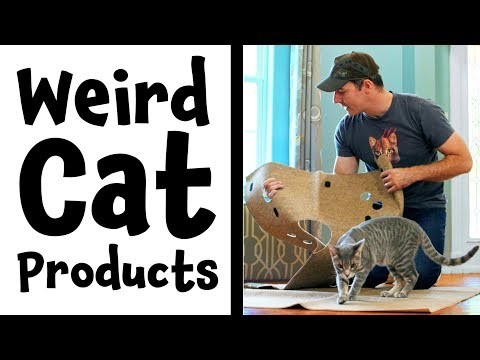 Weird Cat Products Found On Amazon | The Ripple Rug Cat Activity Mat | Review