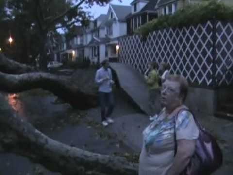 Tornado, Microburst, or Macroburst. Forest Hills, NY Damage on 9/16/2010