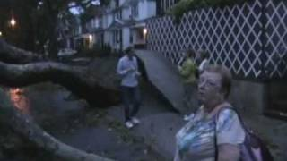 Tornado, Microburst, or Macroburst. Forest Hills, NY Damage on 9/16/2010